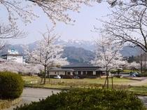 春の花香るカリオンパーク