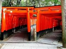 【京都】伏見稲荷大社 千本鳥居