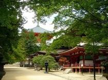 檀上伽藍高野山真言密教の修行施設が集積したエリア(お車で約90分):