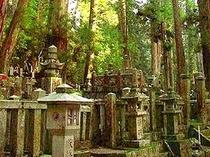 世界遺産「高野山」:弘法大師の御廟へと続く「奥の院参道」にはあまたの墓石群が。