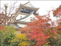 紅葉に包まれる岡崎城