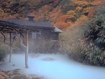 鶴の湯 紅葉