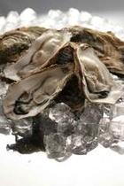 天然岩牡蠣