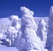 *ライザに広がる樹氷の森