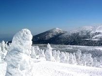 蔵王 樹氷 仙台近郊にはスキー場が多くあります。
