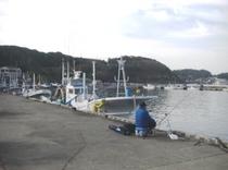 湾内・堤防釣り