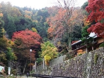 三岳寺の紅葉