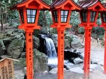 椿岸神社の金竜の滝