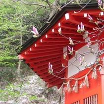 三岳寺 お堂