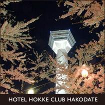 五稜郭公園 夜桜ライトアップ