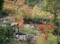 渓流沿い露天風呂紅葉3