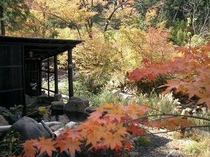 渓流沿い露天風呂紅葉1