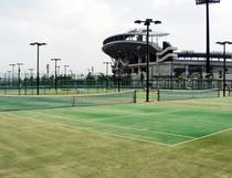 テニスコート(松山中央公園)