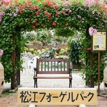 松江フォーゲルパーク幸せの椅子