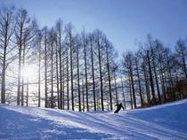 スキーボード