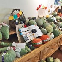 *かたしなや(直売所)/農家の方が愛情を込めて野菜。ぜひお試しくださいませ!