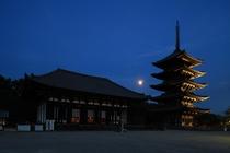 興福寺(世界遺産) 電車と徒歩で約15分