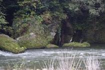 当館真下の大岩と白鷺