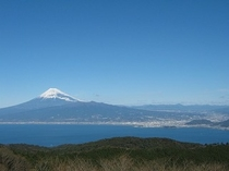 達磨山からの富士
