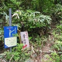 登山ルート01
