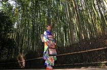 京都フォトツアーI