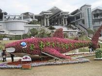 草花で作られた海の動物たちが、沖縄の春を彩ります。