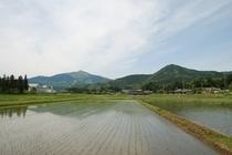 筑波山と峯寺山