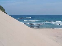 ビーチには風で出来た砂山も・・・