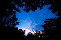 【中庭】夜イメージ4