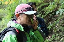 【アクティビティ】森林セラピ-3