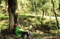 【アクティビティ】森林セラピ-2