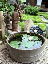 苔の生えた庭
