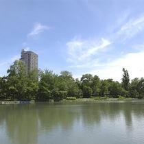 【夏】中島公園