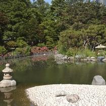 【春】【夏】中島公園