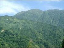 日本の百名山の一つ荒島岳 季節によって色んな表情が見えるよ♪