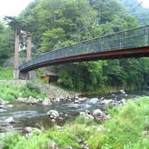 新緑のやまゆり吊橋