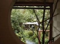 窓から庭を望む