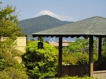 四阿から望む富士山