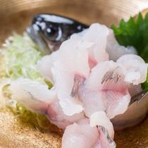 *お夕食一例/旬の魚をお造りに。脂もほどよくのってとっても美味です。