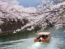 春にお出掛け下さい。岡崎桜回廊と十石舟めぐり、当館よりバスを利用して約10分~15分