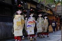 当館よりすぐ花見小路に出ると舞妓さんに出会う機会があります。