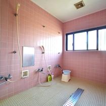 シャワールーム(シャンプー、ソープ、タオル備付)