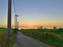 【宮古島景観】海へのグラデーションが美しい、夕暮れの小道。