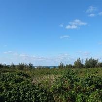 *客室からの眺め/大きな空と青い海が目の前、開放感いっぱい!(※オーシャンビューは西側客室)