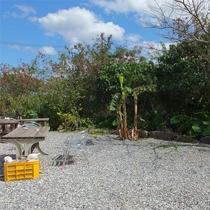 *お庭/宮古島の陽射しが降り注ぐお庭。ダイビングや海遊びの後はのんびり過ごそう♪
