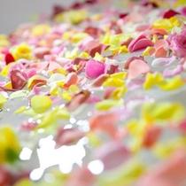 【エステ】バラの香り