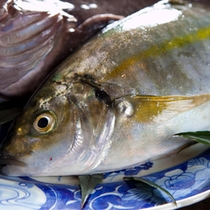 【料理】新鮮な海鮮料理(料理一例)