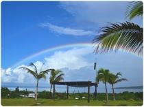 スコールの後に庭に架かる虹