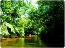 ジャングルを漕ぐ!