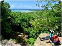 ジャングルを登れば絶景が広がります!!